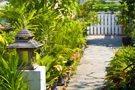 Beautiful garden at outdoors photo