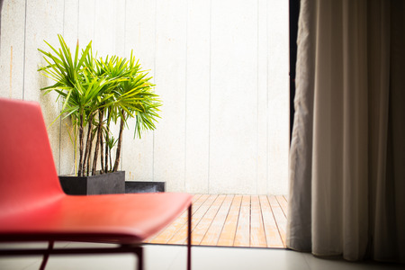 century plant: modern chair in a bright and sunny living room Stock Photo