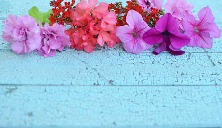 flowers on the wooden vintage background. Selective focus.