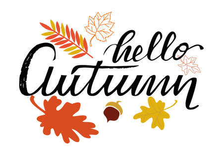Hello autumn hand lettering phrase on  leaf background  イラスト・ベクター素材