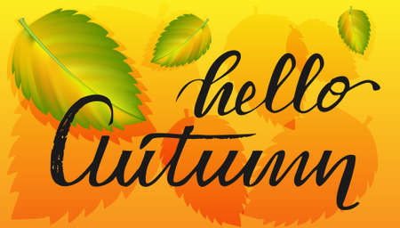 Hello autumn hand lettering phrase on leaf background