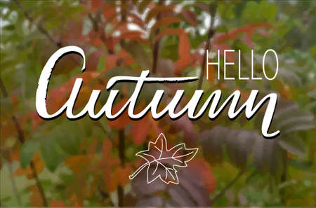 Hello autumn  hand lettering on blurred unfocused background leaves