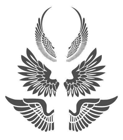 Wings isolated on white background. Design elements for logo, label, emblem, sign, brand mark. Vector illustration. Illustration