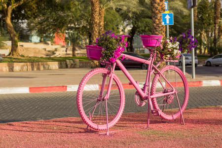 pink cycle south city street decoration object in park square space summer time