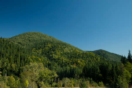 summer time green mountain hill national park nature landscape scenic view blue sky background copy space