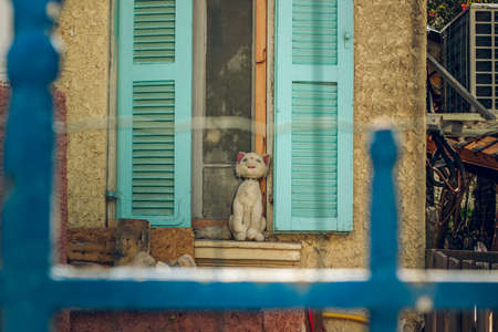 back yard exterior garden space of soft toy cat on windowsill with open shutters outside picture with blue metallic fence and grid foreground frame work space