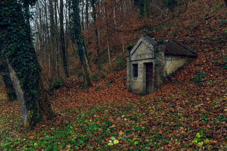 abandoned medieval Gothic style crypt in autumn dramatic moody forest evening scary nature environment space