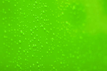 vivid green soft focus wall background surface with condensation dew water drops copy space Stock Photo - 150276250