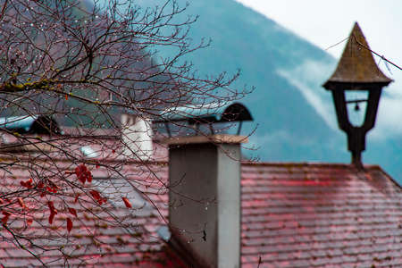 autumn rainy day time water drops on bare branches and house roof top with vintage chimney architecture landmark rural view moody October season