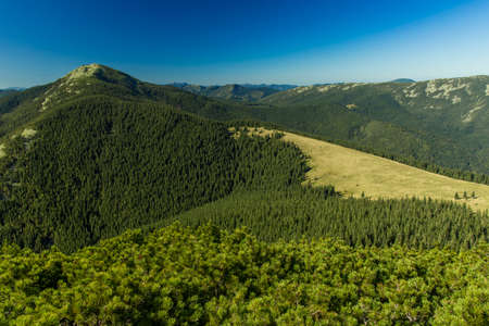 mountain forest landscape aerial photography scenery top view green nature summer day time clear weather