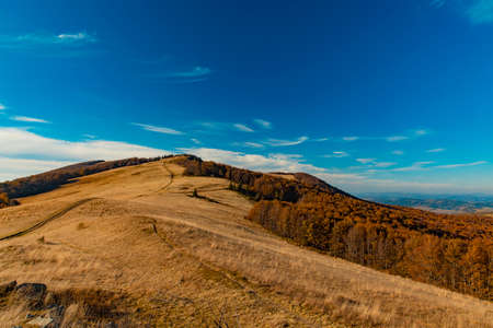 autumn mountain forest landscape September clear weather day time aerial nature photography in Carpathian region of Ukraine Фото со стока
