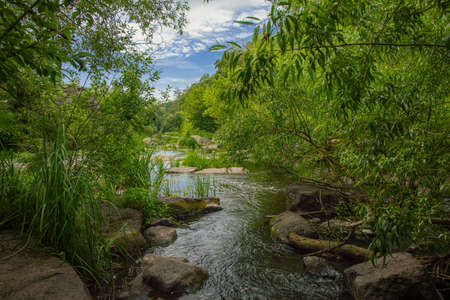 beautiful tropic nature landscape photography of rocky river stream in green trees foliage outdoor frame colorful environment space in national park area