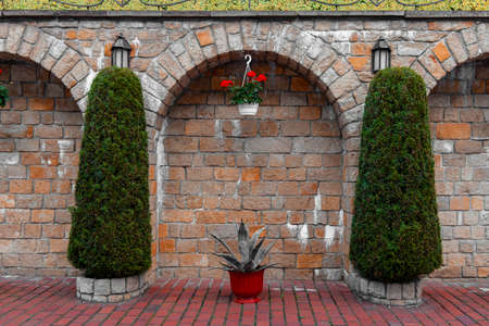 decorative exterior garden background space brick wall symmetry arch architecture frame shape with small trees and flower vase wallpaper concept picture of back yard Фото со стока