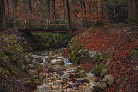 autumn park outdoor scenery nature landscape photography of rocky river stream and wooden bridge romantic atmospheric fairy tale environment space of October fall season time