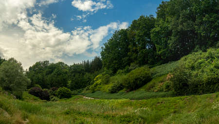 green park outdoor nature photography landscape scenic view with walking trail in peaceful summer clear weather day