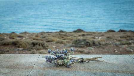 Beautiful Greek wild lavender on the background of the sea on natural wooden background. Copy space for text. Aromatherapy and essential oil concept. Space for you product. Banco de Imagens