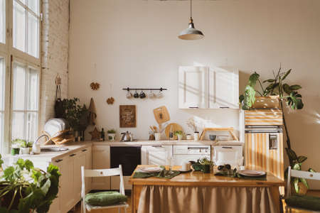 A cozy kitchen in the rays of sunlight. Modern home interior in Scandinavian style