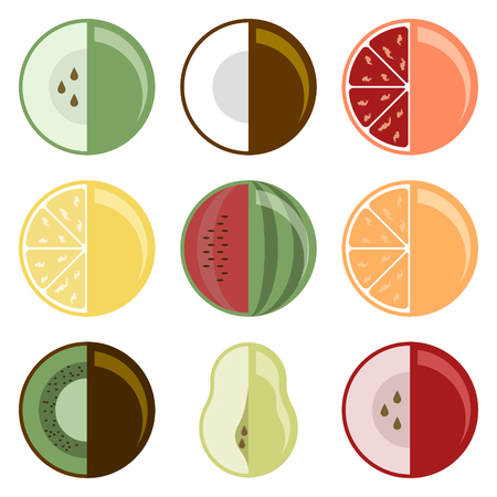 Fruit collection. Set of nine different species. Special style. Vector illustration on white background