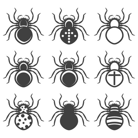 Set of icons of spiders with a different color pattern. Isolated vector on white background