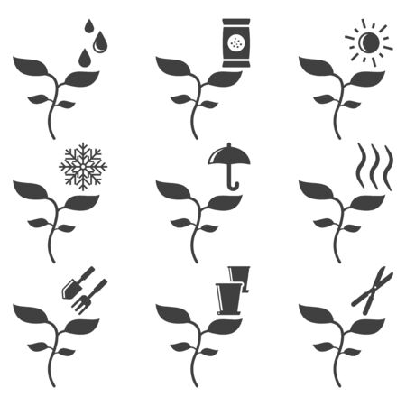Set of plant care icons. Vector on white background