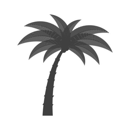 Palm tree icon. Isolated vector on white background