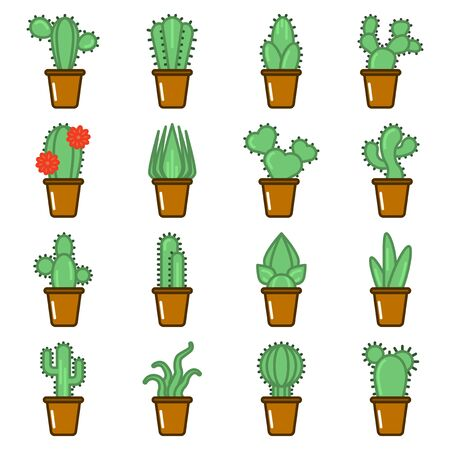 Set of multicolored cactus icons. Cartoon image of various varieties of cacti in pots. Isolated vector on a white background.