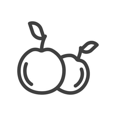 Apples icon. Simple, minimalistic line art on a clean backing. Isolated vector on white background. Illusztráció