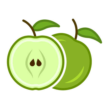 Minimalist cartoon icon of a green apple in the section. Location one after the other. Isolated vector illustration on white background.