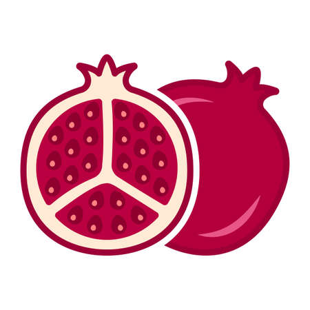 Minimalistic cartoon cutaway pomegranate icon. Location one after the other. Isolated vector illustration on white background.