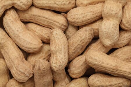 nutshells: Background make from ripe groundnuts (into nutshells)