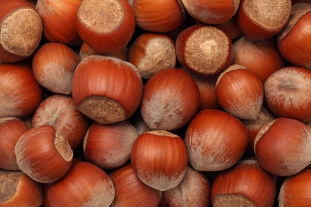 nutshells: Background make from ripe hazelnuts (into nutshells)