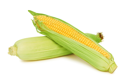mealie: Two raw corn on the cob with green leaves (isolated)