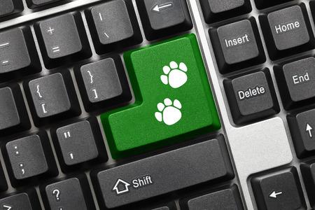 huellas de perro: Primer punto de vista conceptual en el teclado - tecla verde con el símbolo de perro Huellas Foto de archivo