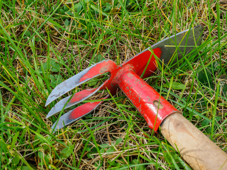 Hoe lies on the green lawn. Tools for garden work. Stock Photo