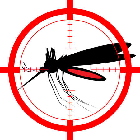 insect mosquito: Mosquito vector icon silhouette isolated on white background Illustration
