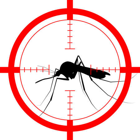 dipterus: Mosquito vector icon silhouette isolated on white background Illustration