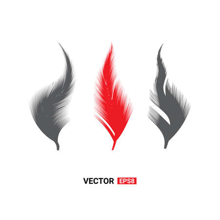 Birds feathers vector icon collection. Simple plume illustration or isolated on white background