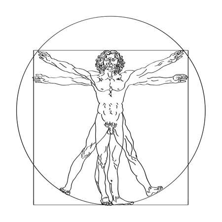 Stylized sketch of the Vitruvian man or Leonardos man. Homo vitruviano vector illustration based on Leonardo da Vinci artwork Иллюстрация