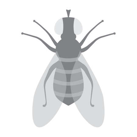 Halftone Fly Icon Isolated on White Background. Pest Symbol in Engraving Style