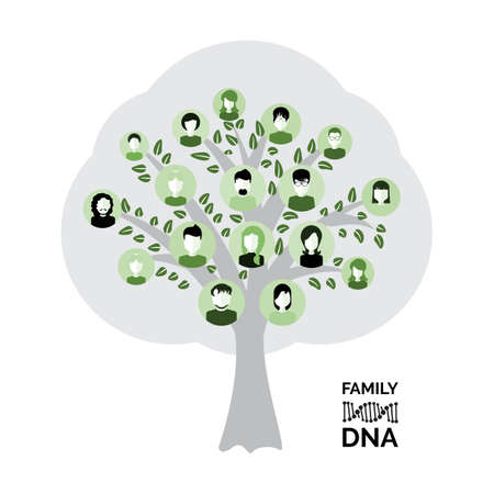Genealogical family tree with avatars isolated on white background. Genealogy tree for dna ancestors illustration
