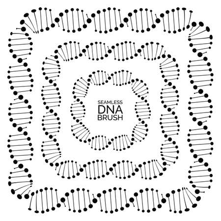 Human dna chain or genome helix isolated. Vector illustration of structural dna molecule seamless lines and frames