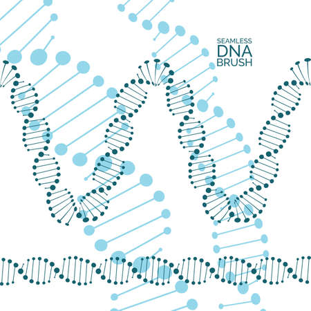 Human dna chain or genome helix isolated. Vector illustration of structural dna molecule seamless lines and waves Illustration