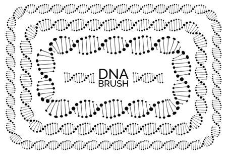 Human dna chain or genome helix isolated. Vector illustration of structural dna molecule rectangular frames