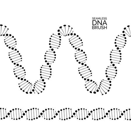 Human dna chain or genome helix isolated. Vector illustration of structural dna molecule seamless lines and waves