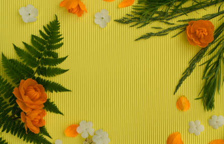Orange petals of globe flowers or trollius europaeus on aspen gold yellow paper background with blank space for text top view and flat lay