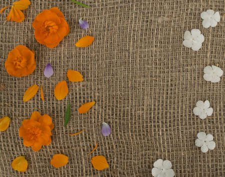 Orange petals of globe flowers or trollius europaeus on brown burlap background with blank space for text top view and flat lay 스톡 콘텐츠