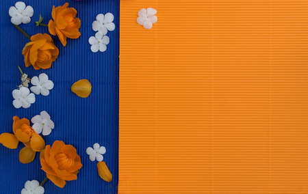 Orange petals of globe flowers or trollius europaeus on blue paper background with blank space for text top view and flat lay 스톡 콘텐츠