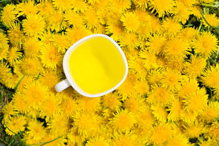 Dandelion flower tea infusion in white cup top view. Herbal beverage, yellow flowers and leaves tisane Banco de Imagens