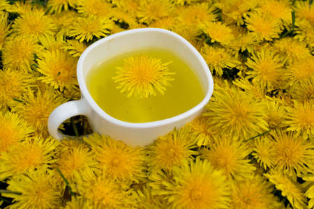 Dandelion flower tea infusion in white cup close up. Herbal beverage, yellow flowers and leaves tisane