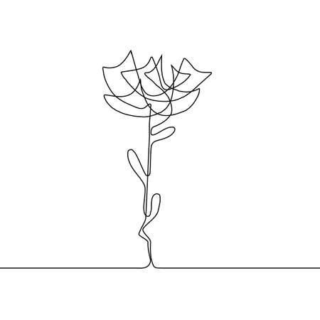 Continuous thin line flower vector illustration, minimalist botanical sketch doodle. One line art flowering blossom icon, single floral outline drawing or simple rose Vettoriali